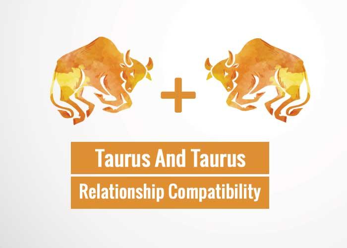 Taurus And Taurus Relationship Compatibility